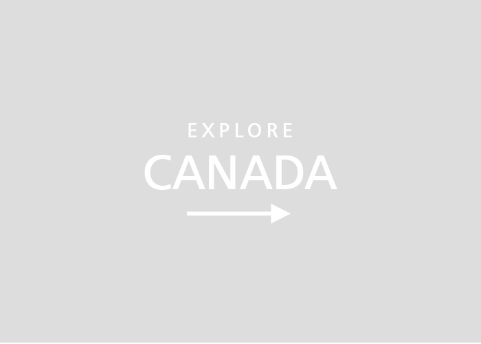 Study in canada and immigration